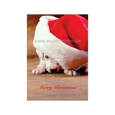 Postkarte Weihnachten ARTCONCEPT WEIHNACHTSWELPE - von Modern Times - scheissladen.com