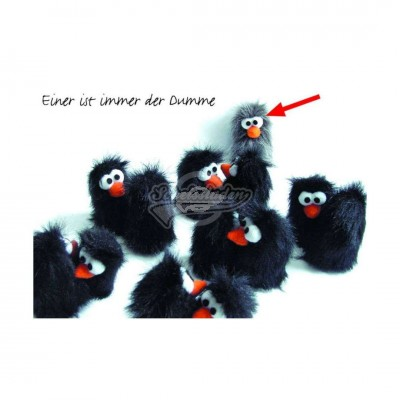 "Postkarte ""einer ist immer der Dumme"""