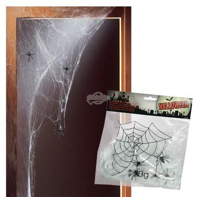 Spinnennetz mit 4 Spinnen